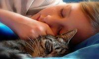 Несколько правил здорового сна