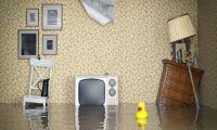 Независимая экспертиза мебели