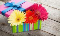 Доставка цветочных презентов: солнечные герберы нравятся всем