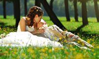 Свадьба вашей мечты (полезные советы)