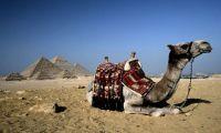 Российским туристам не угрожает опасность, сообщают туроператоры