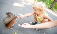 10 летних развлечений для детей в большом городе