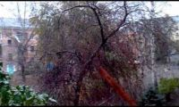 Видео: ранний снег в Рубцовске