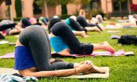 Йога для женского здоровья - главная ценность