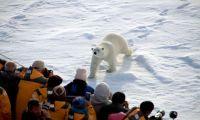 Для туристов в Арктике будут открыты визит-центры