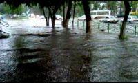 Видео: потоп в Рубцовске