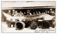 История черной икры: компания «Братья Сапожниковы»
